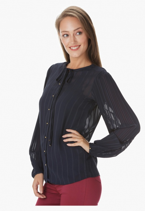 Elle Sheer Shirt with Pleated Sleeves